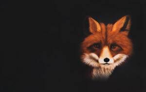 Ritratto su commissione: Paola Rava Artista, autrice del libro Il potere segreto degli animali